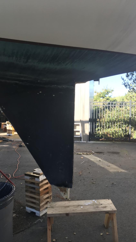 No Rudder W39 project